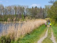 Dlouhý rybník; https://www.lanskroun.eu/lanskrounske-rybniky/d-2703